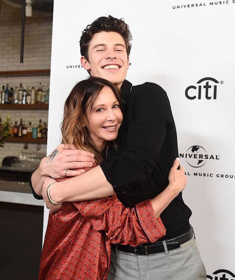icons, imagines, hug and shawn mendes