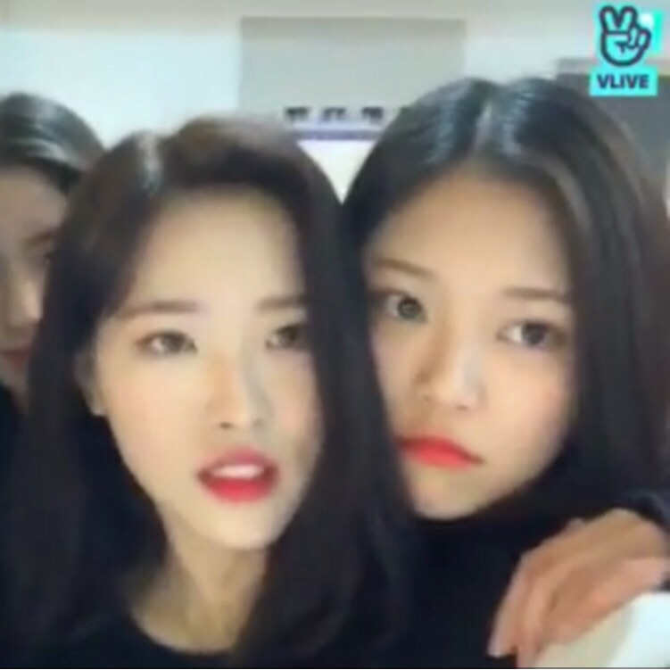yyxy, olivia hye, kpop and asian