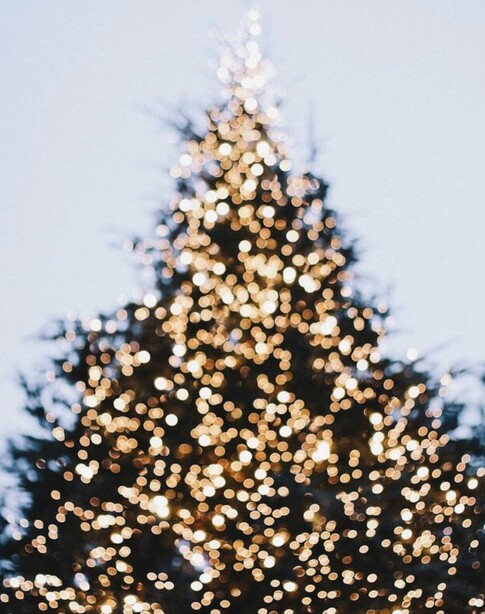 pretty, gold, happiness and christmas tree
