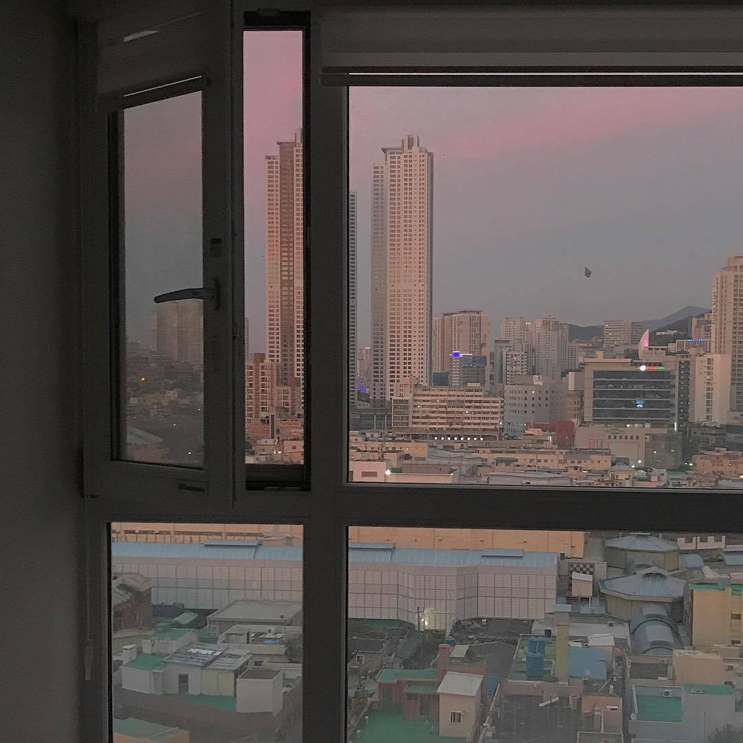 window, city and indie