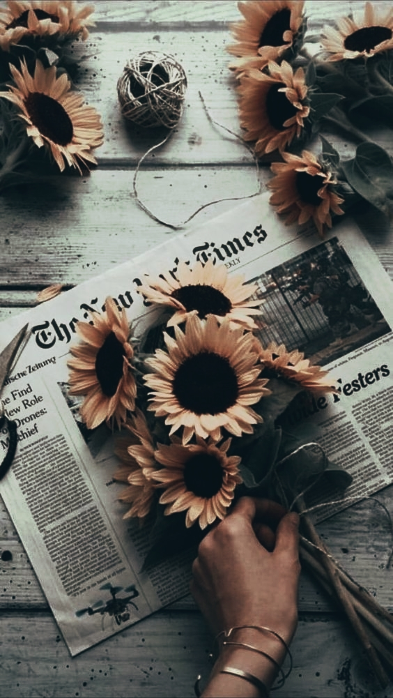 new york times, aesthetic and sunflowers