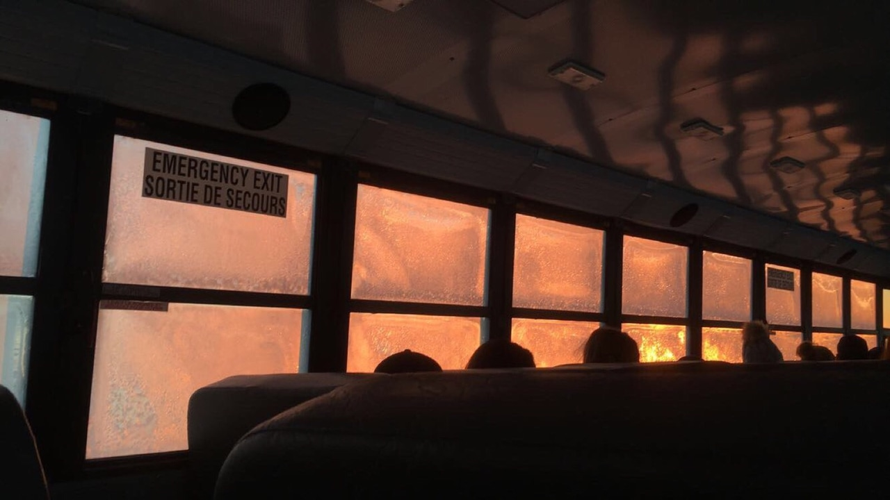pretty, bus, pink and bus windows