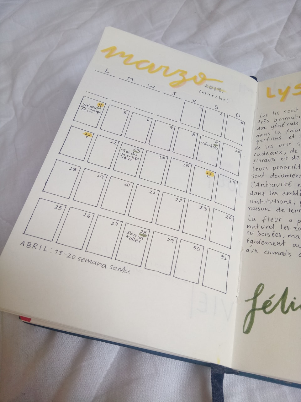 bullet journal, yellow, journaling and march spread