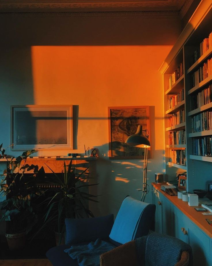 golden hour, appartement, plants and indie