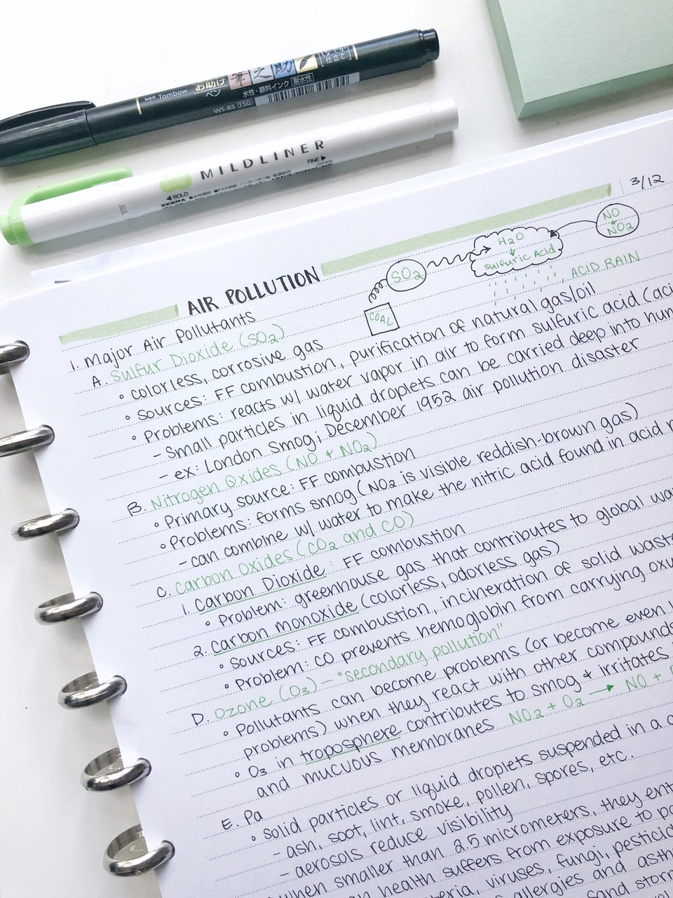 biology notes, studypickle, study with me and bio notes