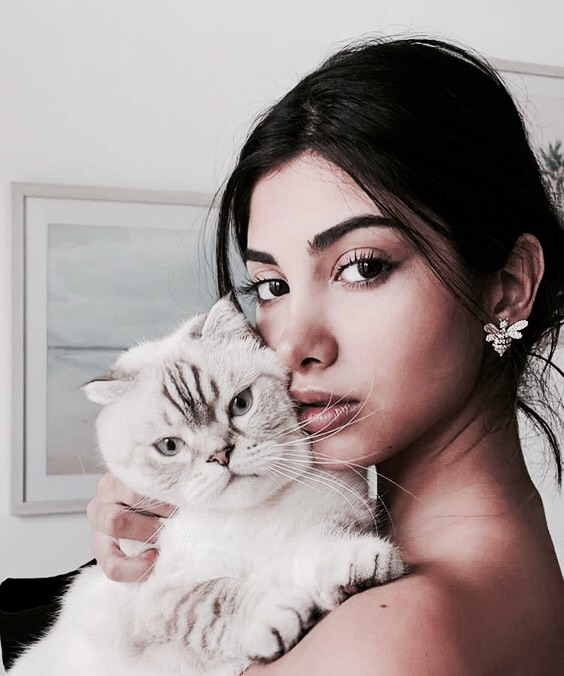 vogue, cute, animal and pets
