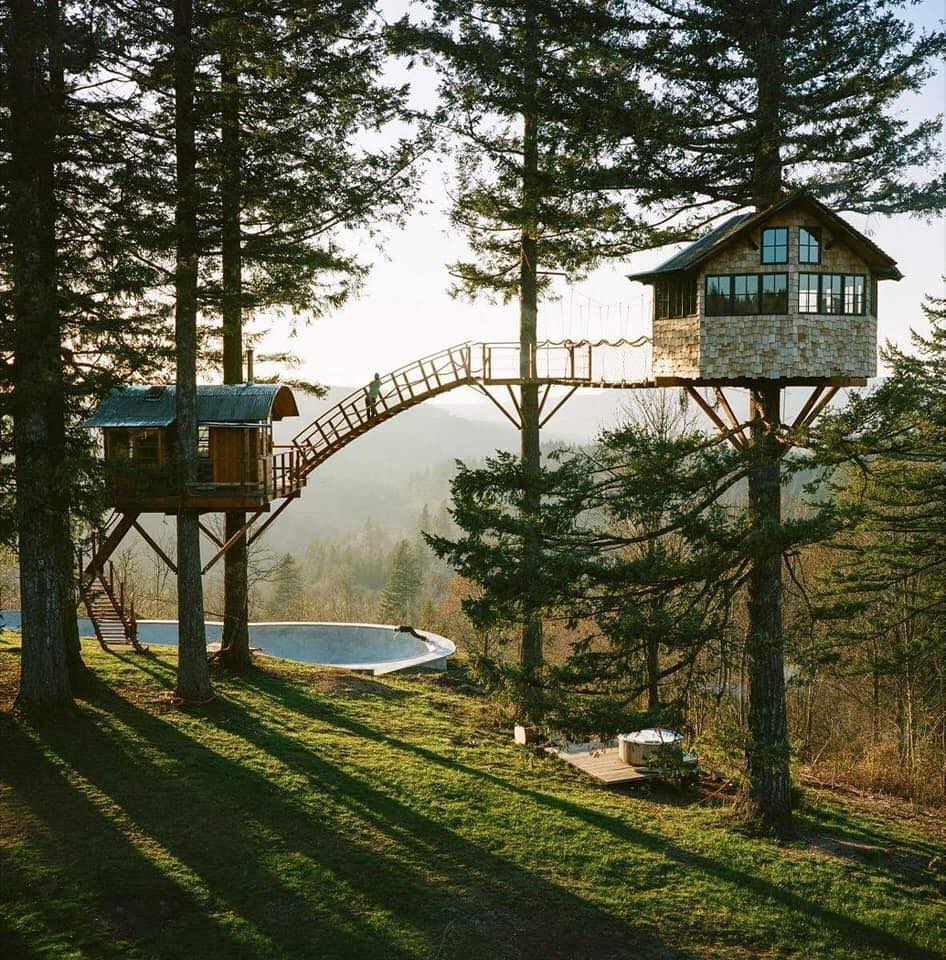 cabin love, cabins, tree house and cabin