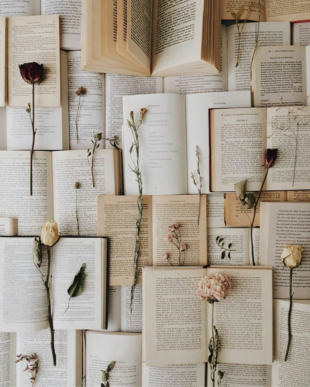 wallpaper, flower, book and sgs